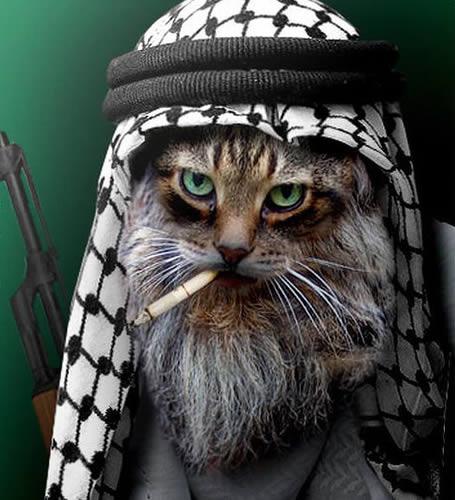 teroristu